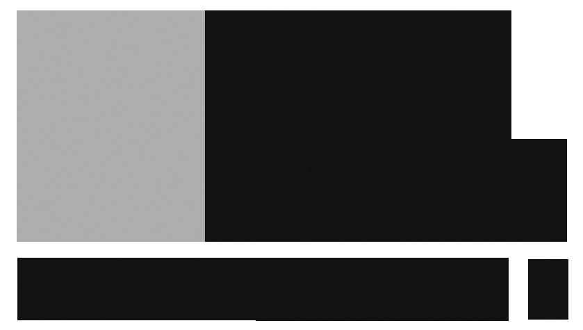 NativeMax_40-95gray_RGB_Logo